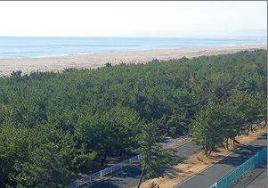 02_閖上海岸(ゆりあげ浜)