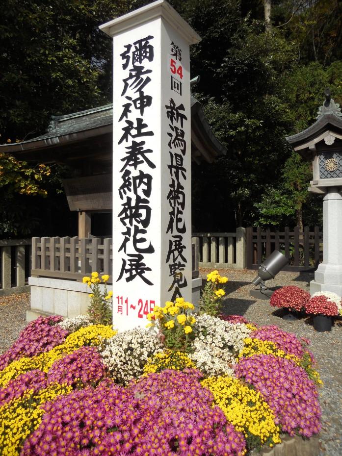 弥彦神社 ②