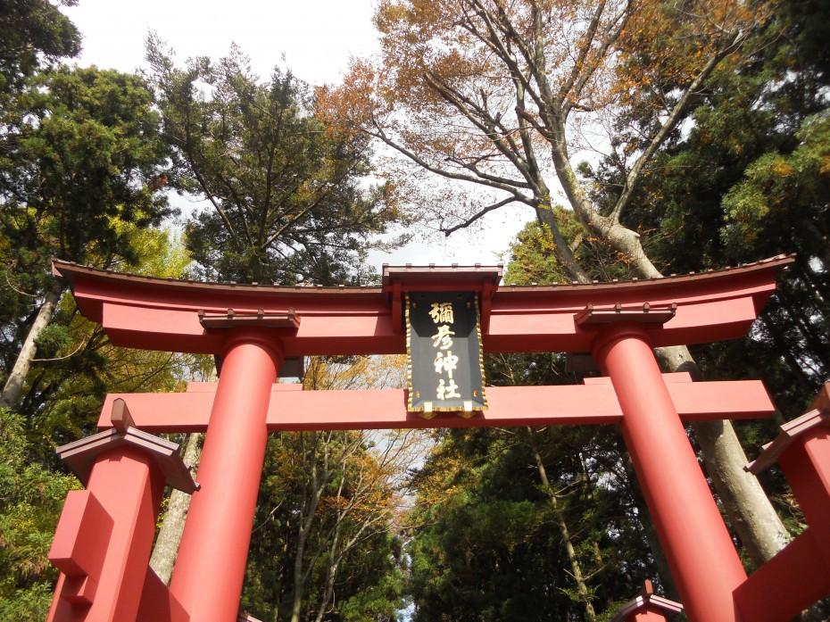 弥彦神社 ① (2014.11.07)